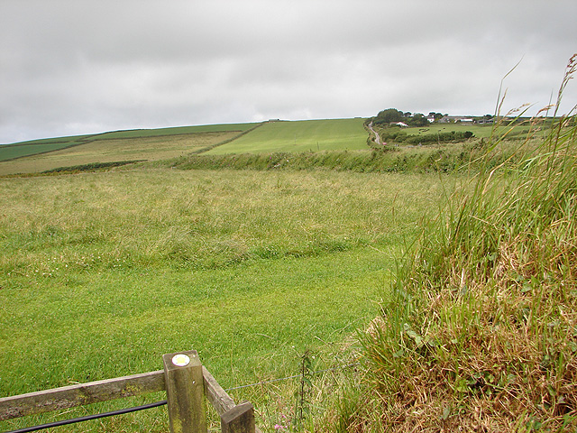 Looking towards Condolden Farm - geograph.org.uk - 495375.jpg