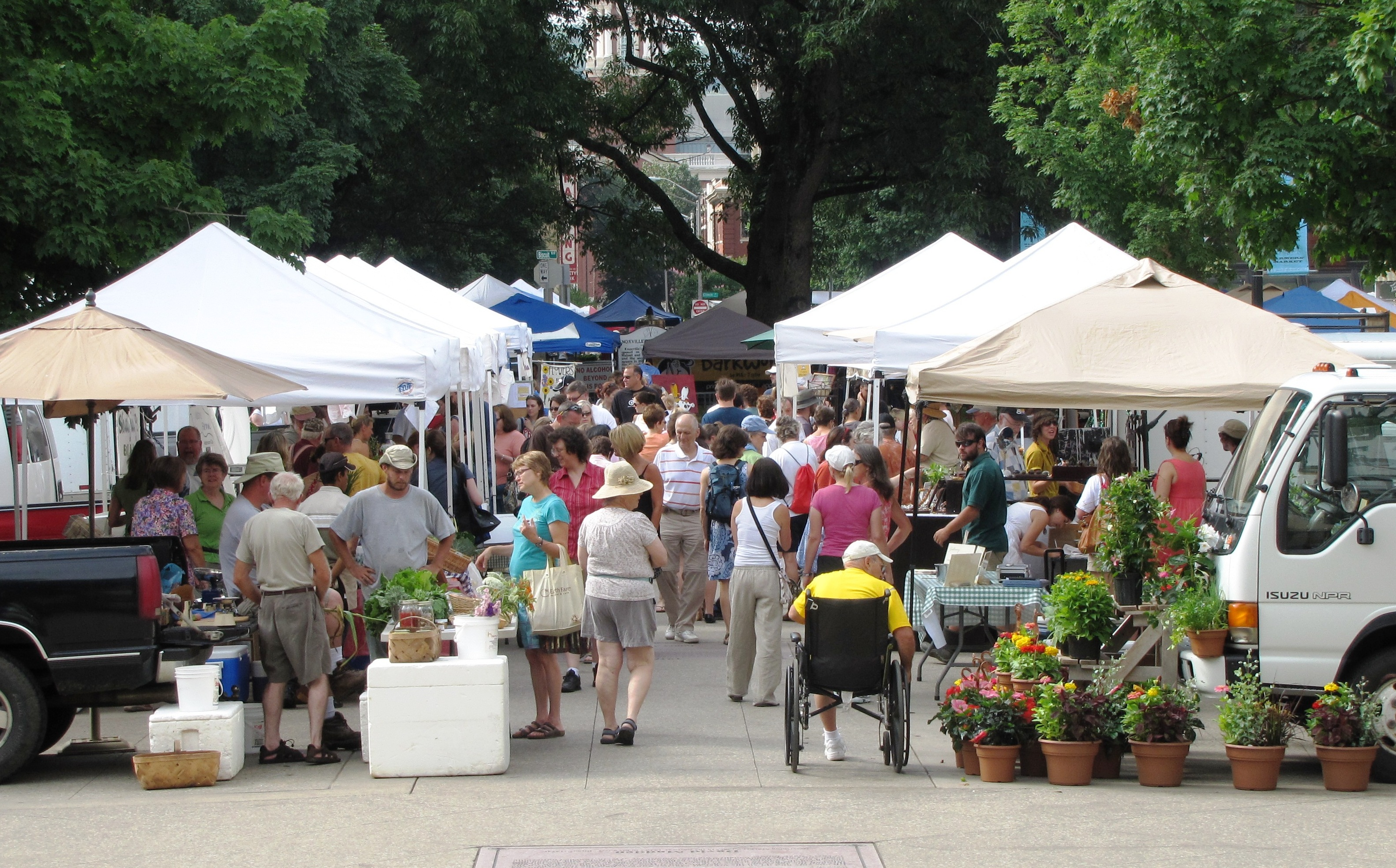 Image result for farmers markets