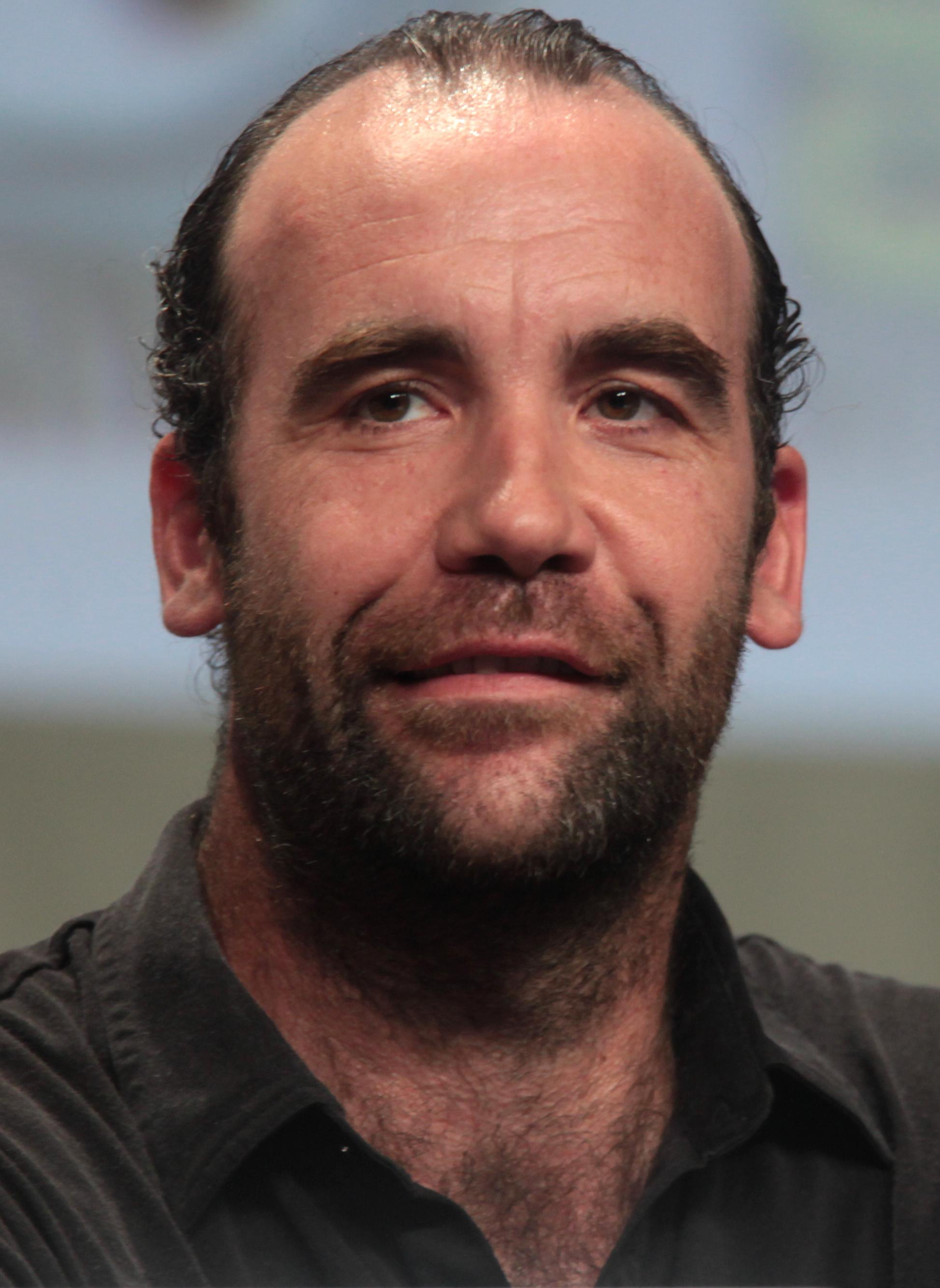 https://upload.wikimedia.org/wikipedia/commons/6/69/Rory_McCann_SDCC_2014.jpg