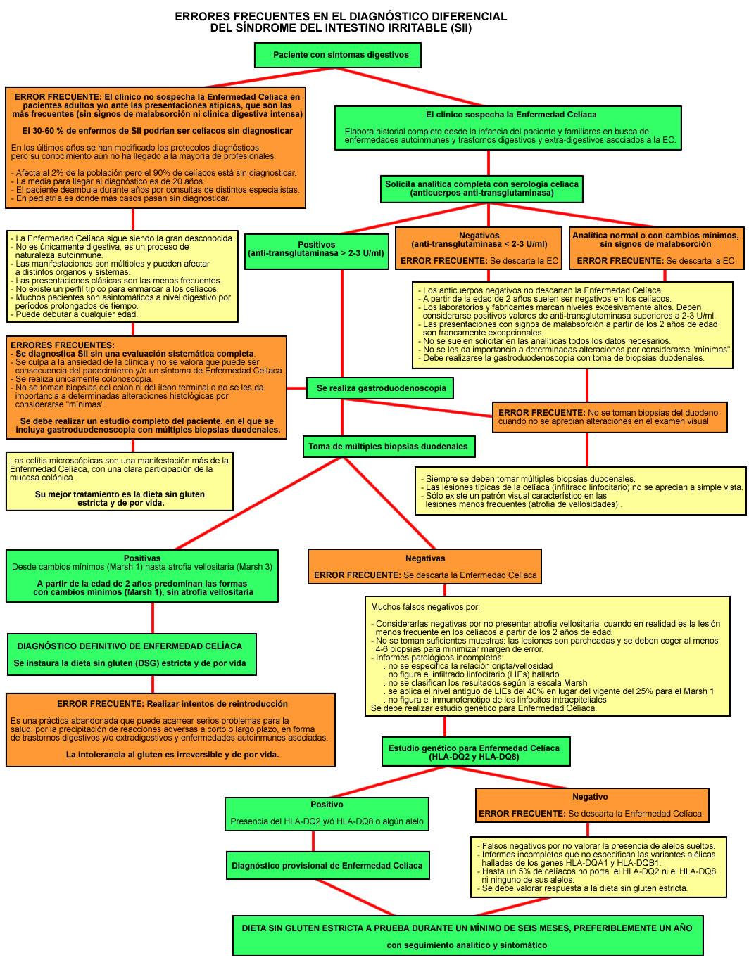 Archivo:SII - Diagrama errores diagnosticos.jpg - Wikipedia, la ...