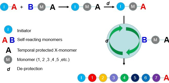 Sequence-controlled Polymer