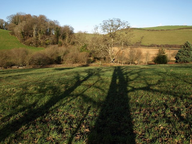 Shadows by the Dart Valley Trail - geograph.org.uk - 1131908