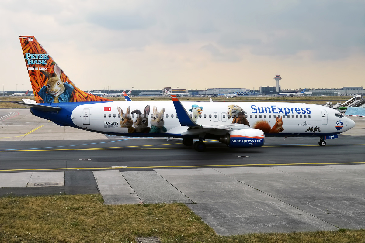 File:SunExpress (Peter Hase Livery), TC-SNY, Boeing 737-8K5
