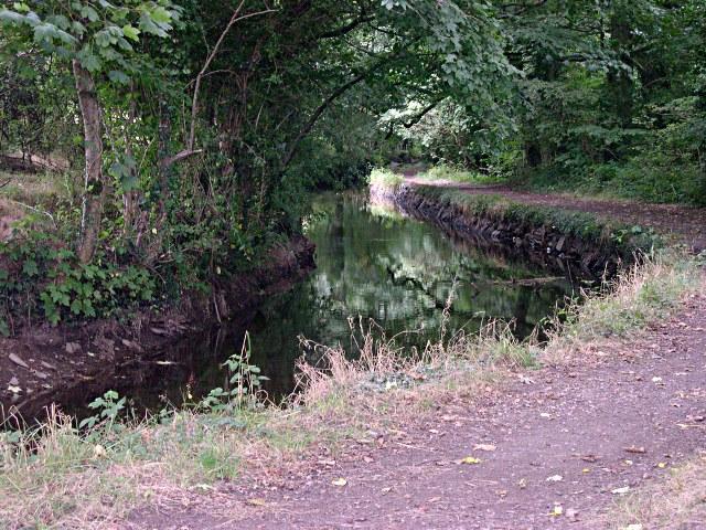 The Tavistock Canal - geograph.org.uk - 332566