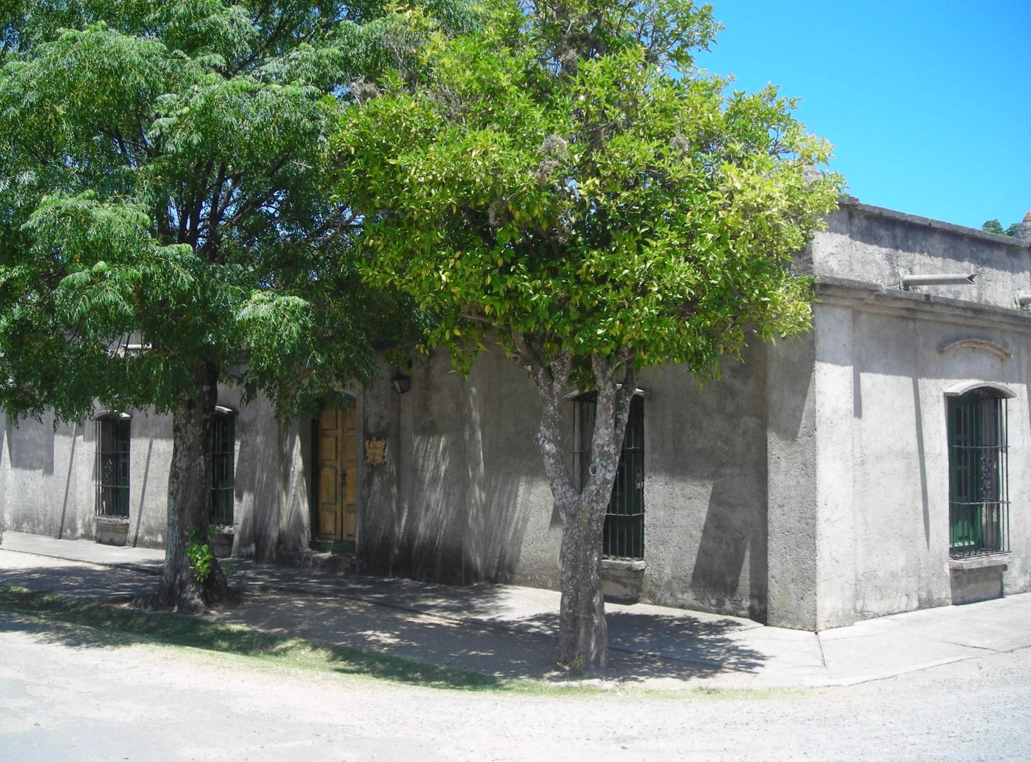 File a la sombra de un arbol en la casa de los marfetan - Casas en arbol ...