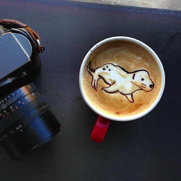 File:A Weddell Seal In Latte Art (8284948684).jpg