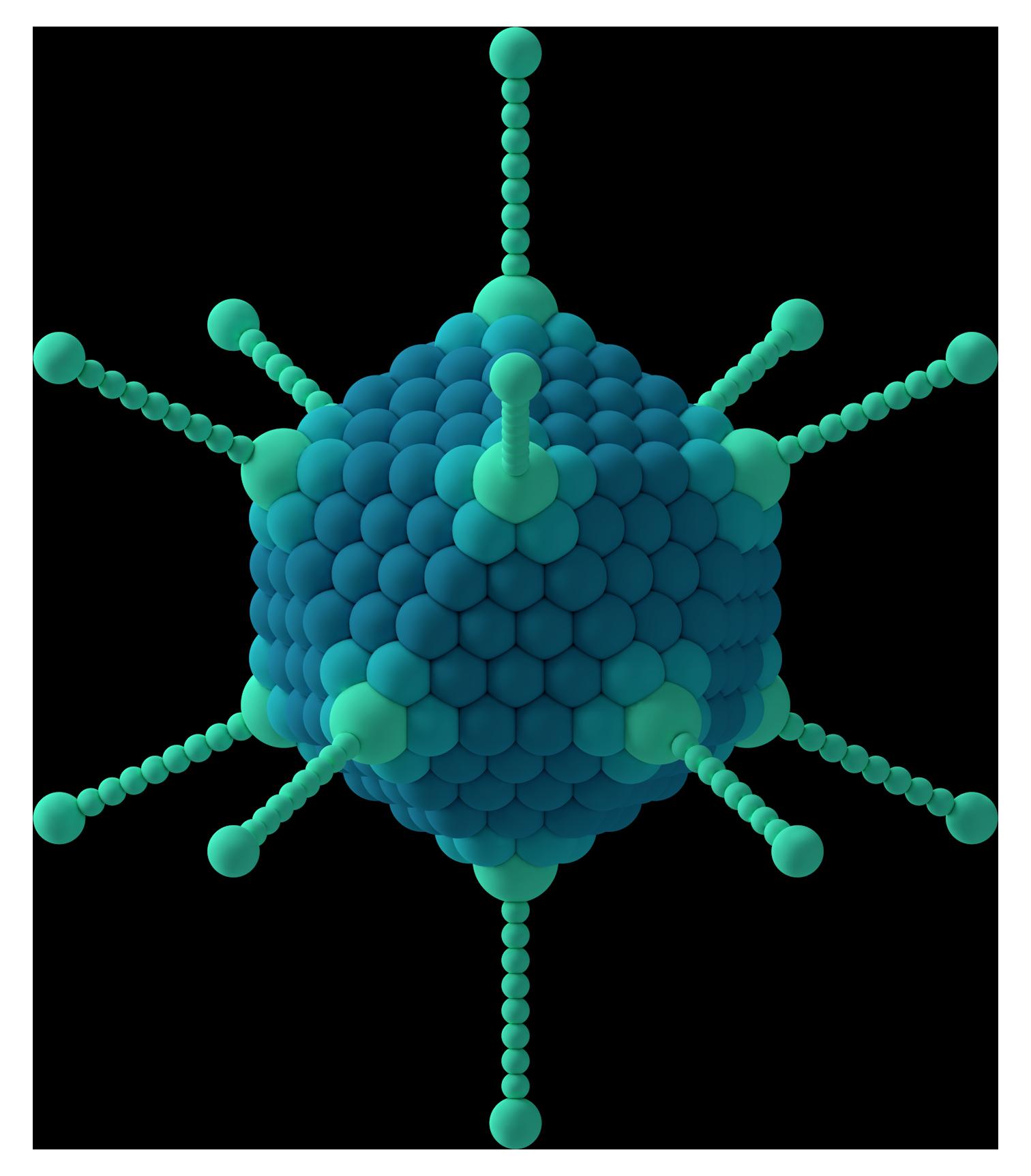 Viral Nano News Viralnanonews: Capsomere