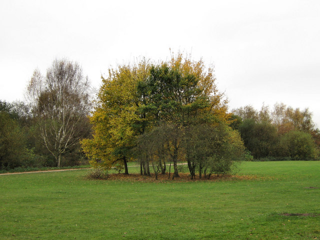Autumn comes to Brereton Heath - geograph.org.uk - 1562355