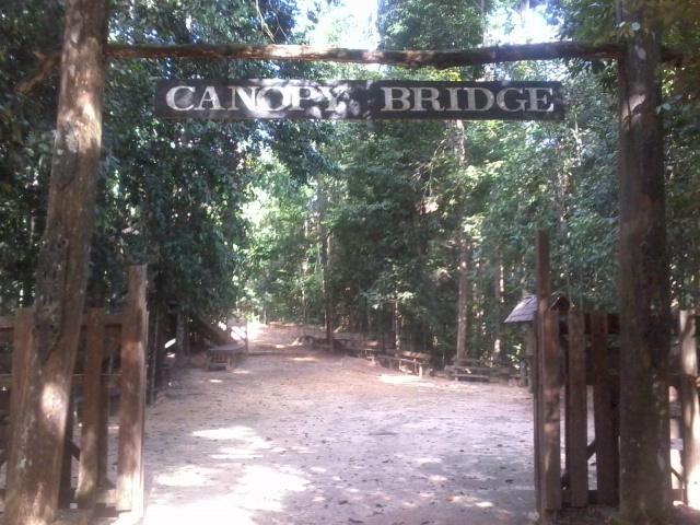 Berkas:Canopy bridge in samboja.jpg