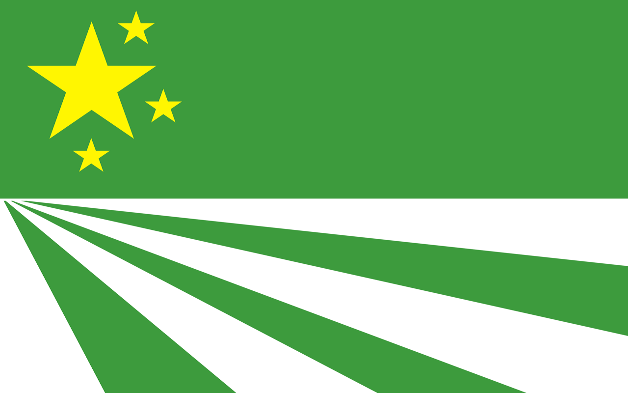 Image result for chernarussian flag