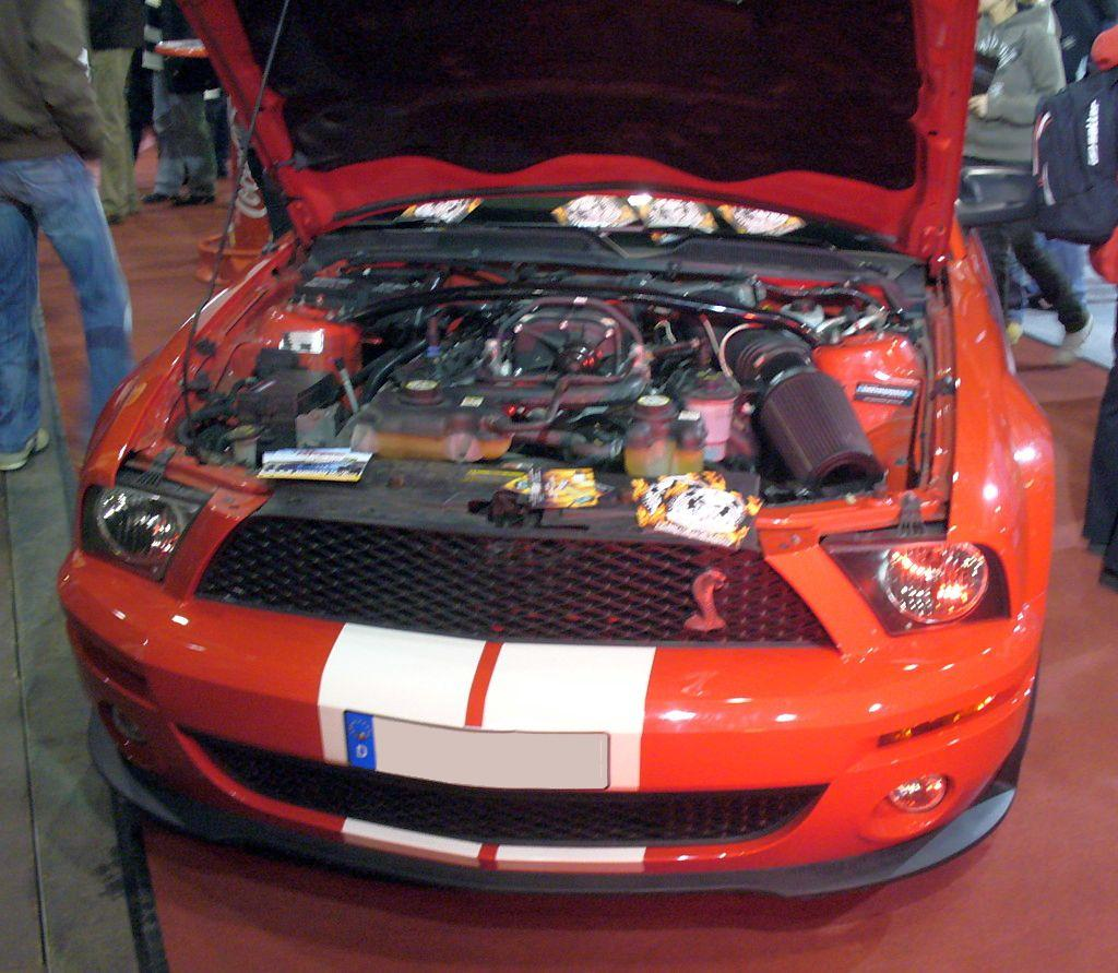 File Ford Mustang Shelby Motor Jpg Wikimedia Commons