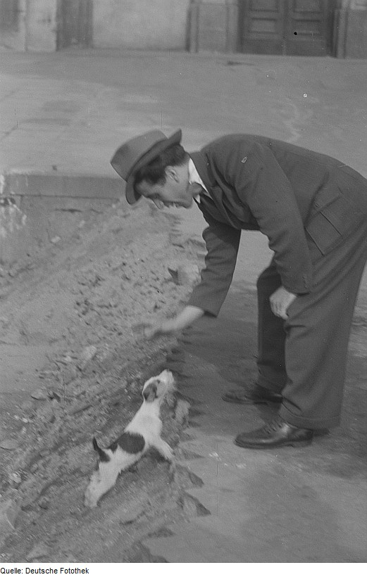 http://upload.wikimedia.org/wikipedia/commons/6/6a/Fotothek_df_roe-neg_0000389_003_Mann_spielt_mit_Hund.jpg