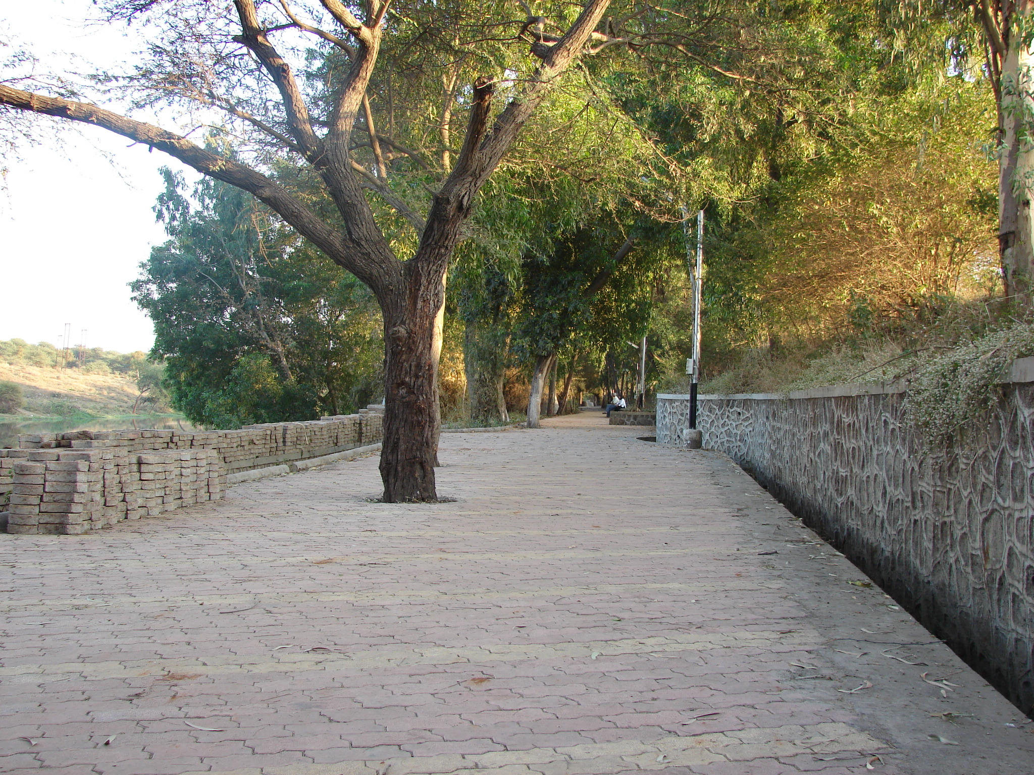 Godapark: a pedestrian street near Godavari River