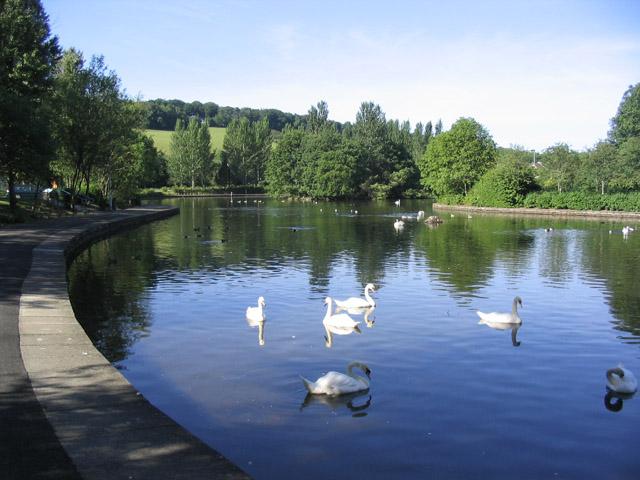 Gunknowe Loch, Tweedbank