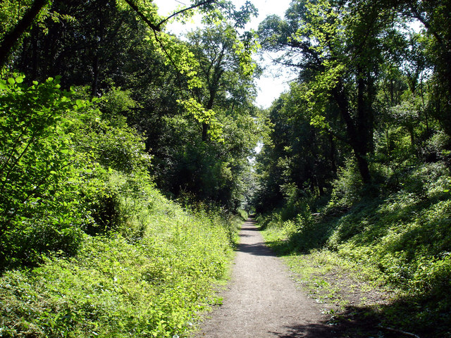 Hadleigh Railway Walk - geograph.org.uk - 1370611