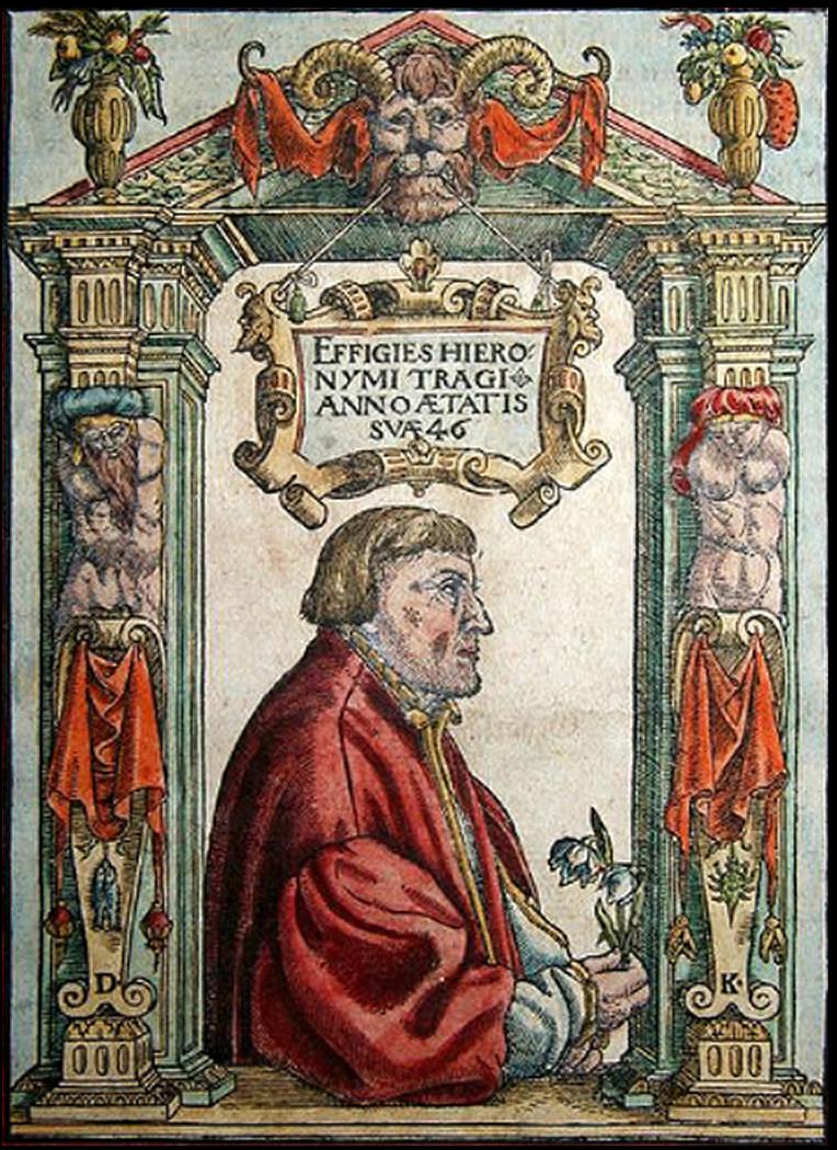 Файл:Hieronymus Bock (1546).jpg