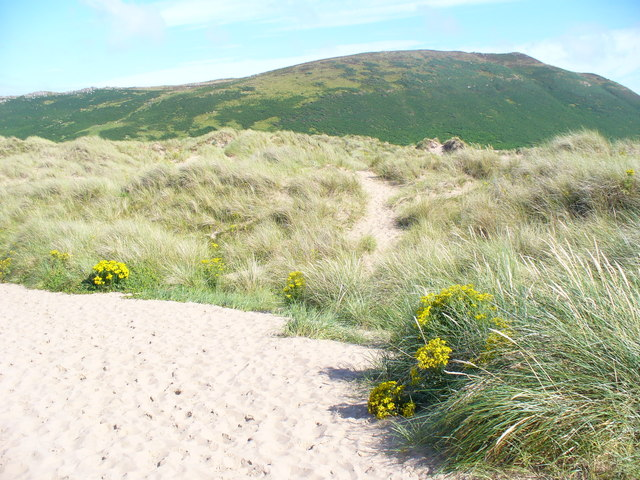 Hillend Burrows - geograph.org.uk - 1419962