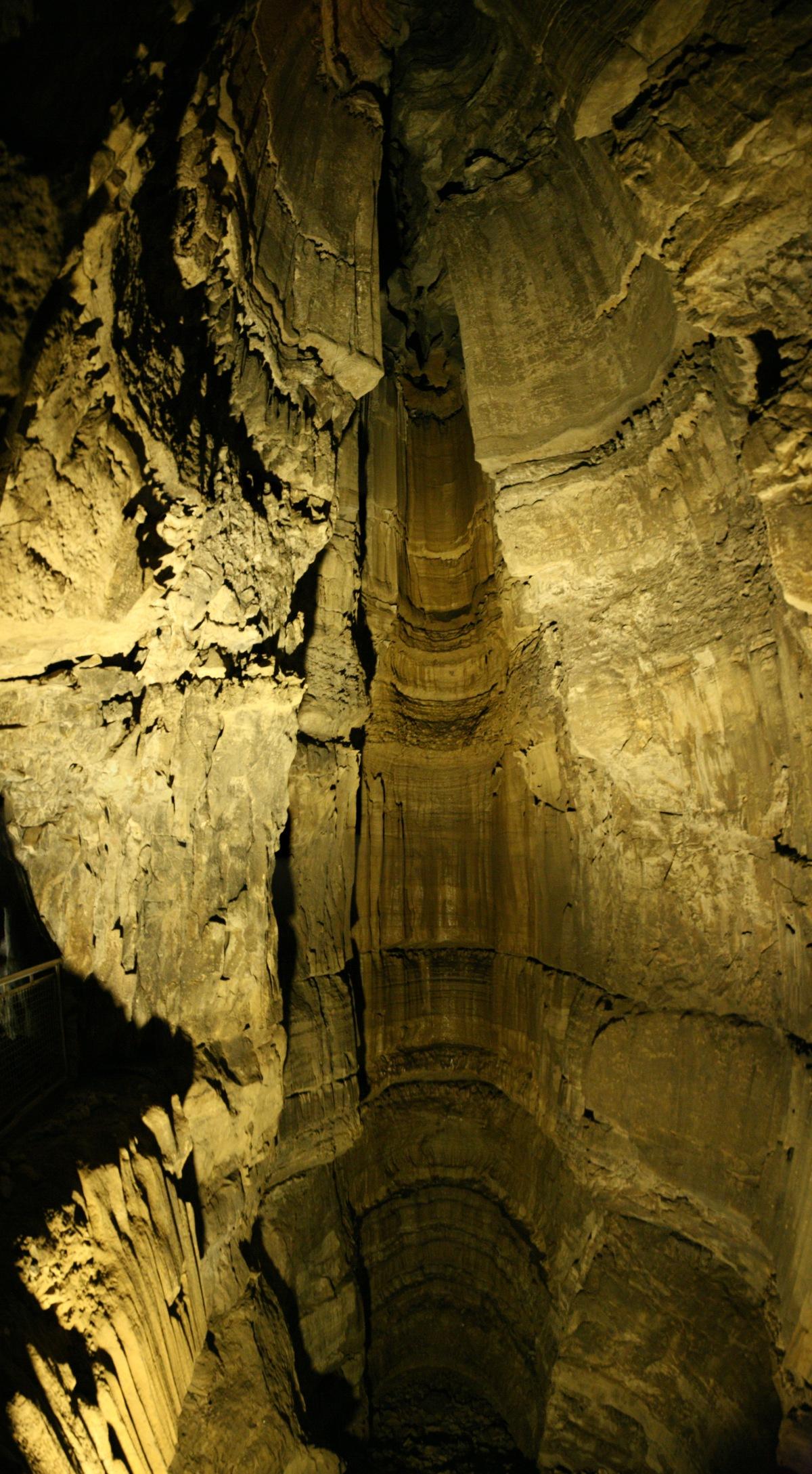 Mammutikoobas Vikipeedia Vaba Ents 252 Klopeedia