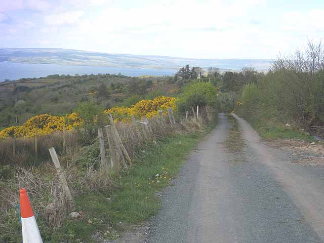 Minor road above Lough Allen - geograph.org.uk - 1111720
