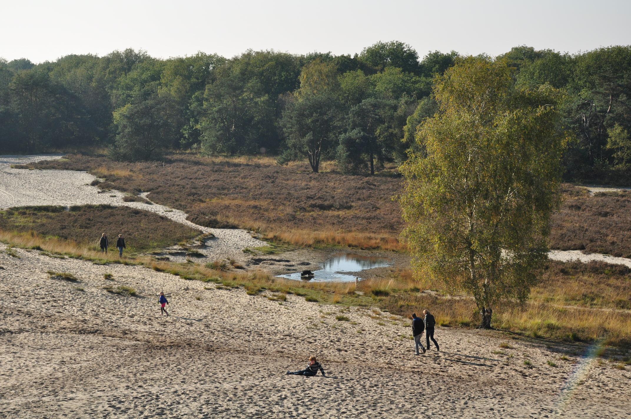 Bestand:Netherlands, Uden, Bedafse Bergen (2).JPG - Wikipedia: nl.wikipedia.org/wiki/bestand:netherlands,_uden,_bedafse_bergen_(2...