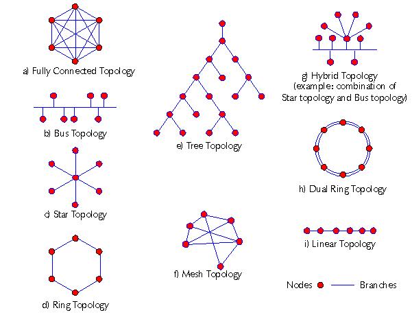 topologie de réseau