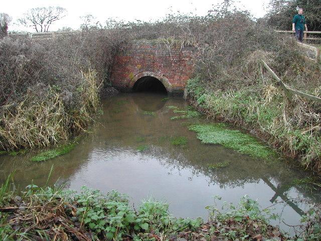 Railway bridge over rhyne - geograph.org.uk - 98553