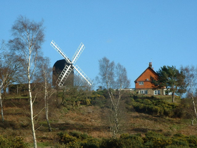 Reigate Heath Windmill - geograph.org.uk - 24486
