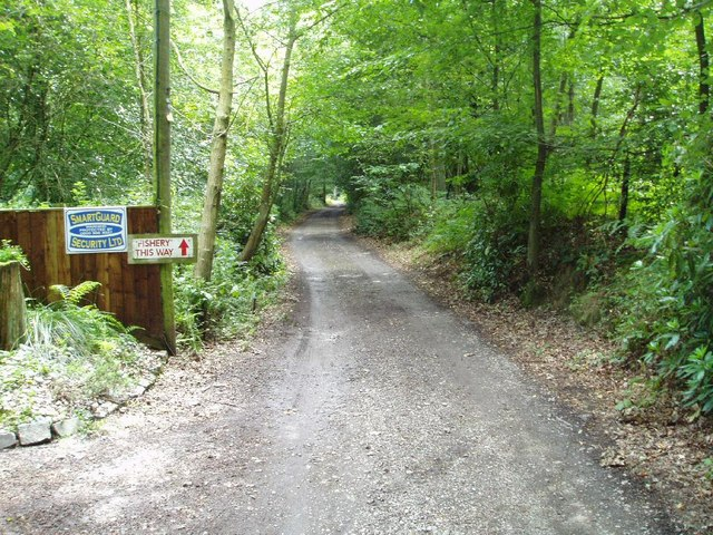 Sussex Border Path - geograph.org.uk - 225710