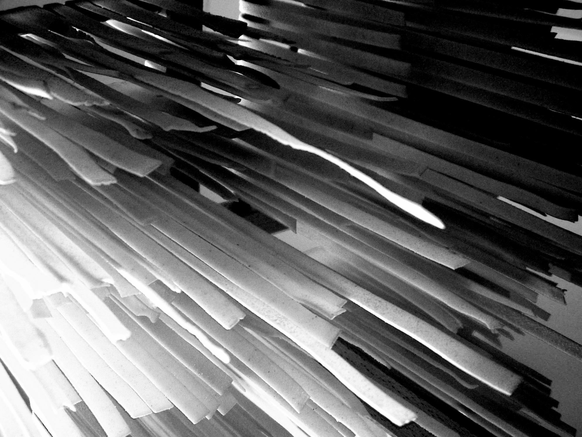 Filetagliatelle In Black And White 2007 Jpg