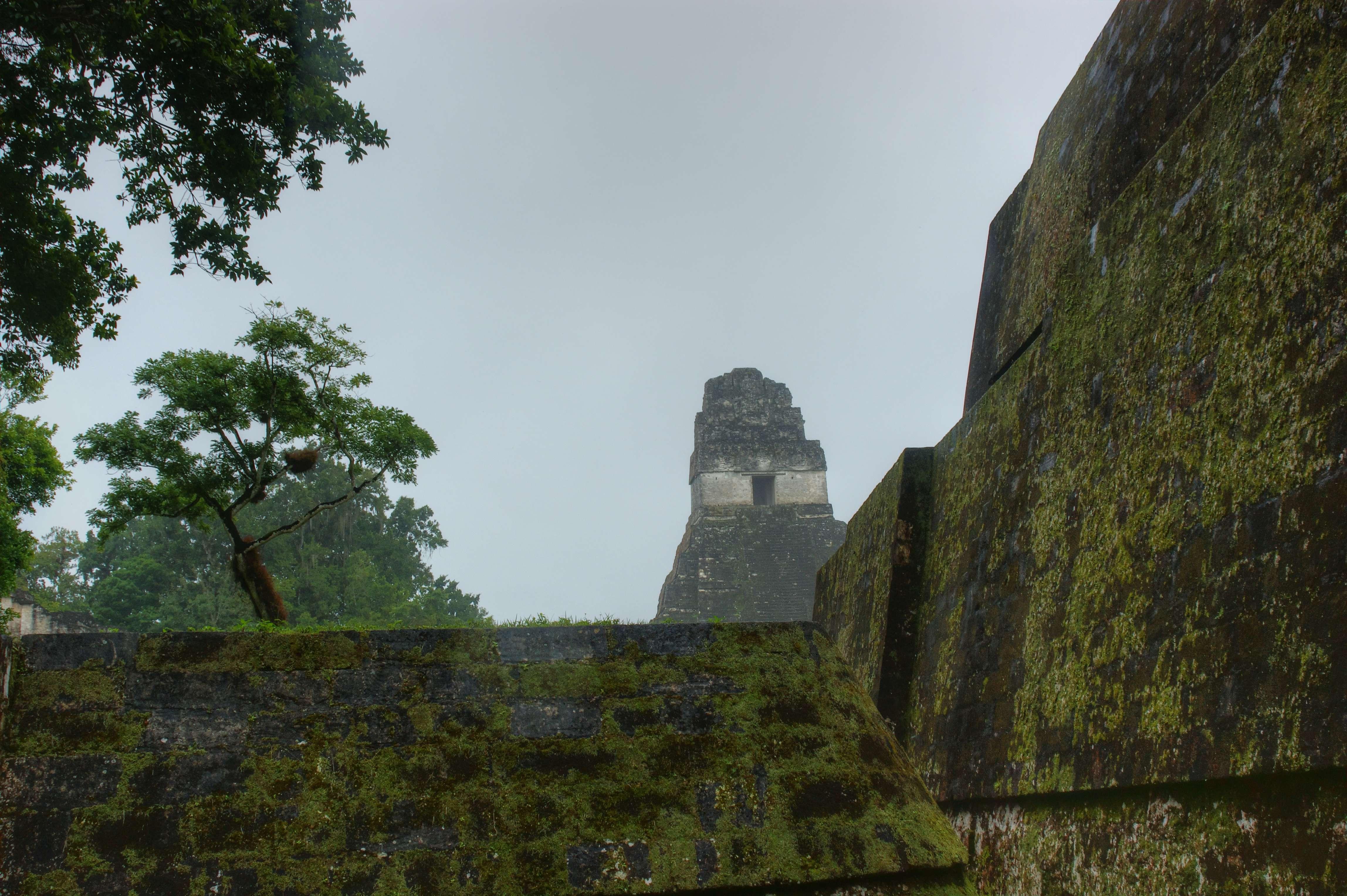 Tikal Guatemala hd Tikal National Park Guatemala