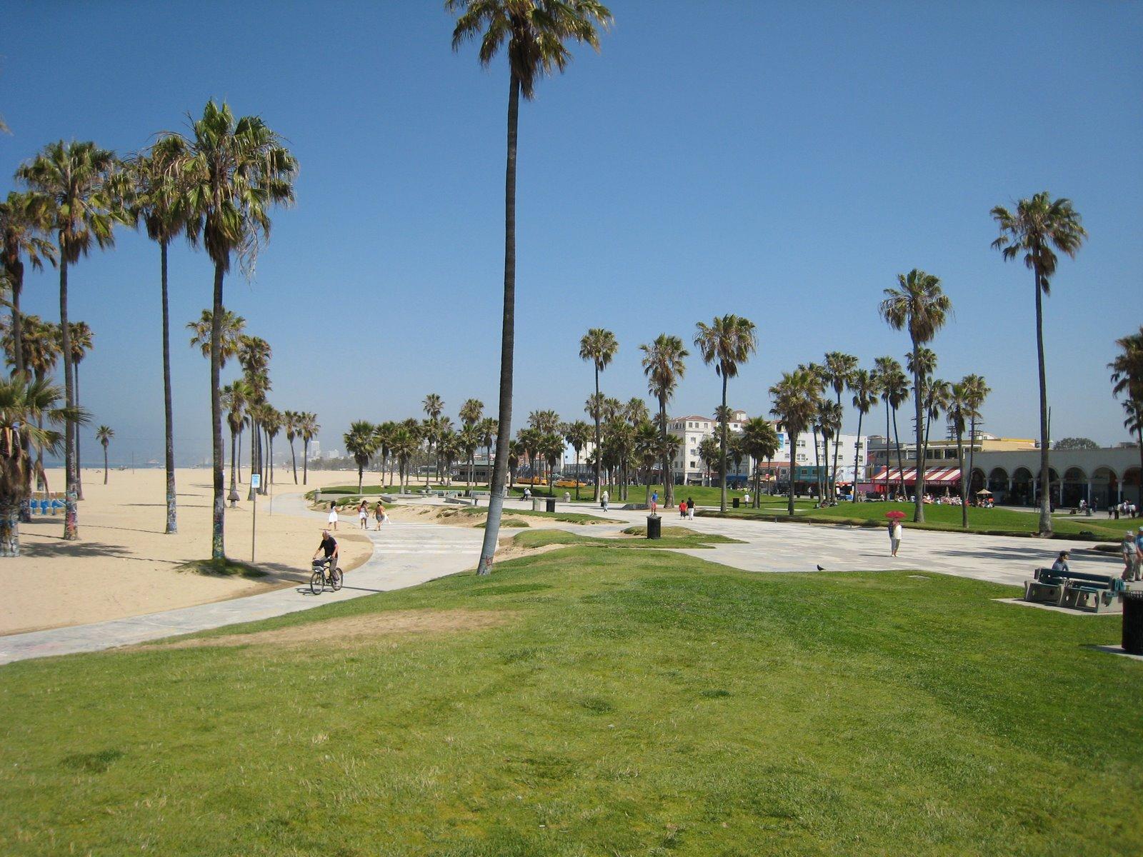 Venice Beach Parking  Pacific Ave Venice Ca