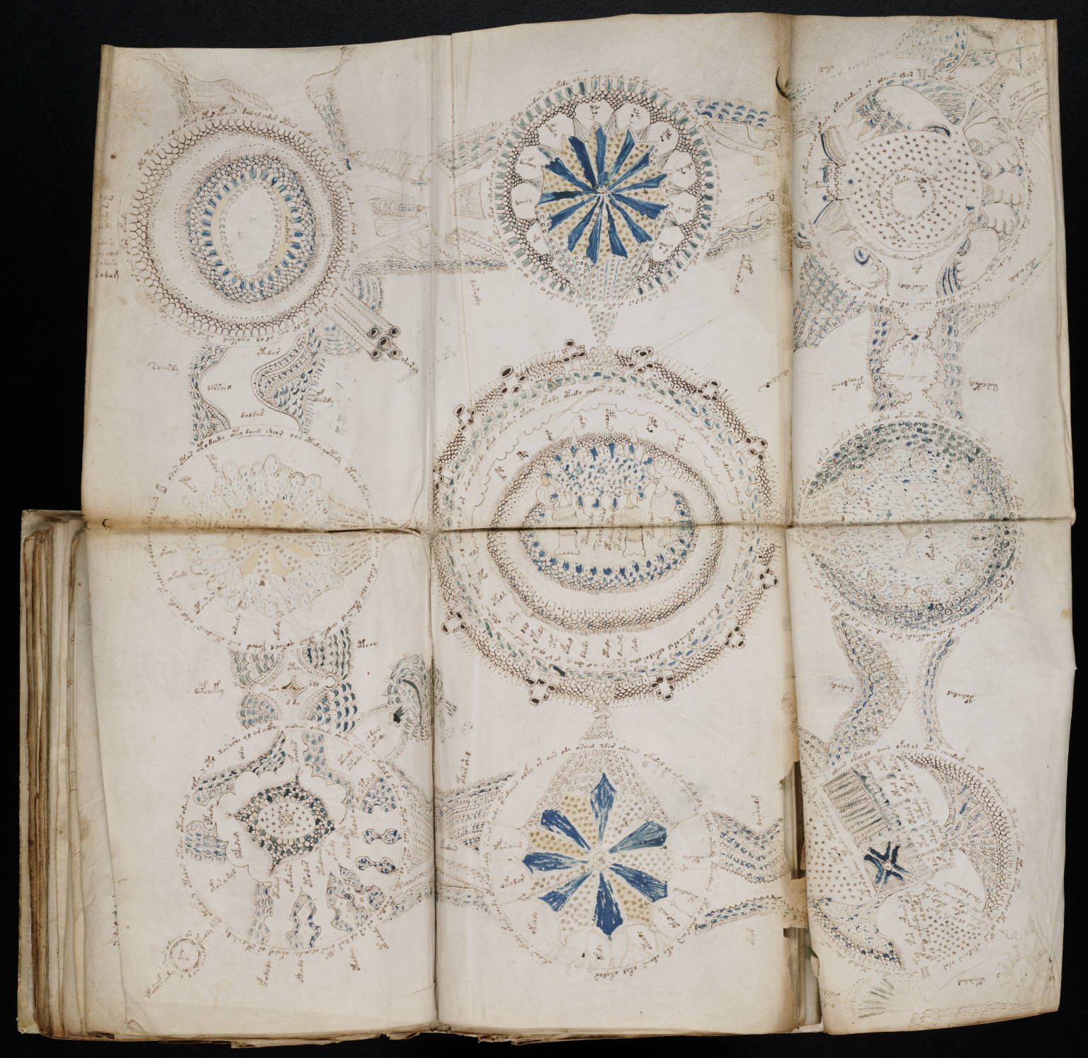 https://upload.wikimedia.org/wikipedia/commons/6/6a/Voynich_Manuscript_(158).jpg