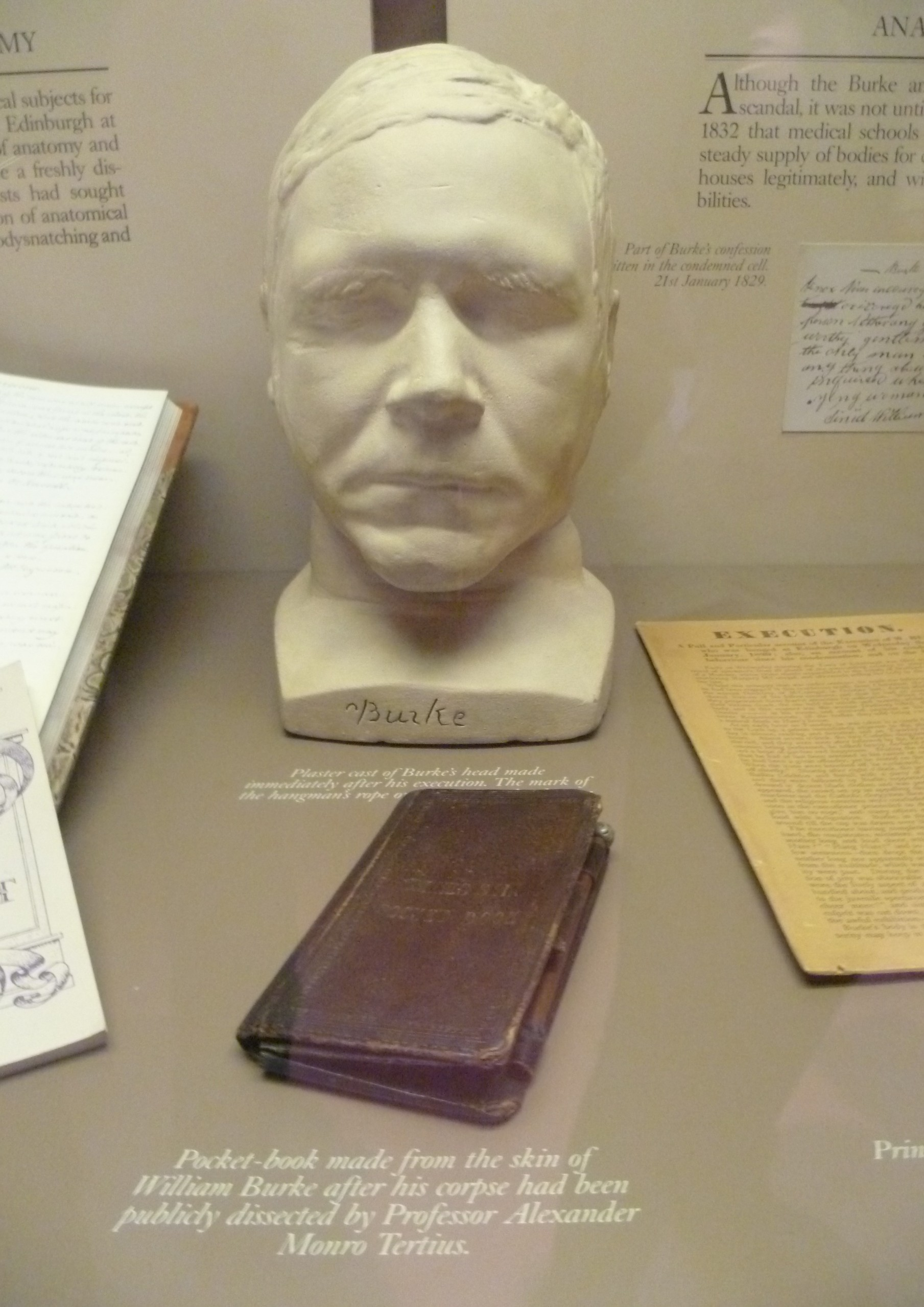William Burke's Facemask and skin journal