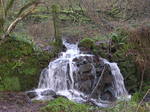Woodland Waterfall - geograph.org.uk - 109907