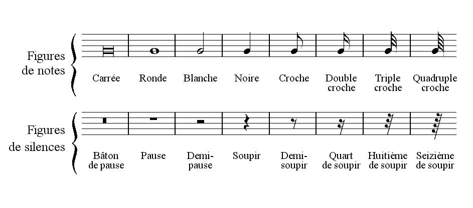 Repr sentation des dur es en musique wikiwand - Temps de portee d une chienne ...