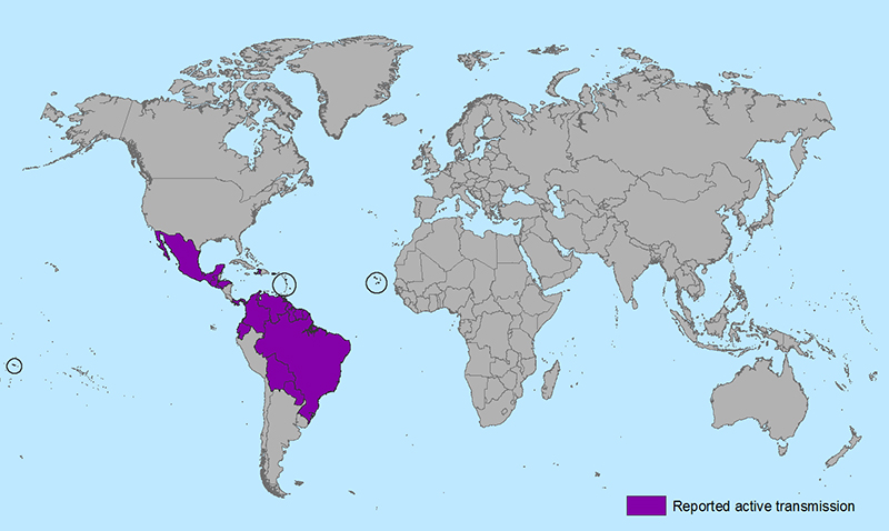 https://upload.wikimedia.org/wikipedia/commons/6/6a/Zika_world_map_active_2016-01-22_web.png