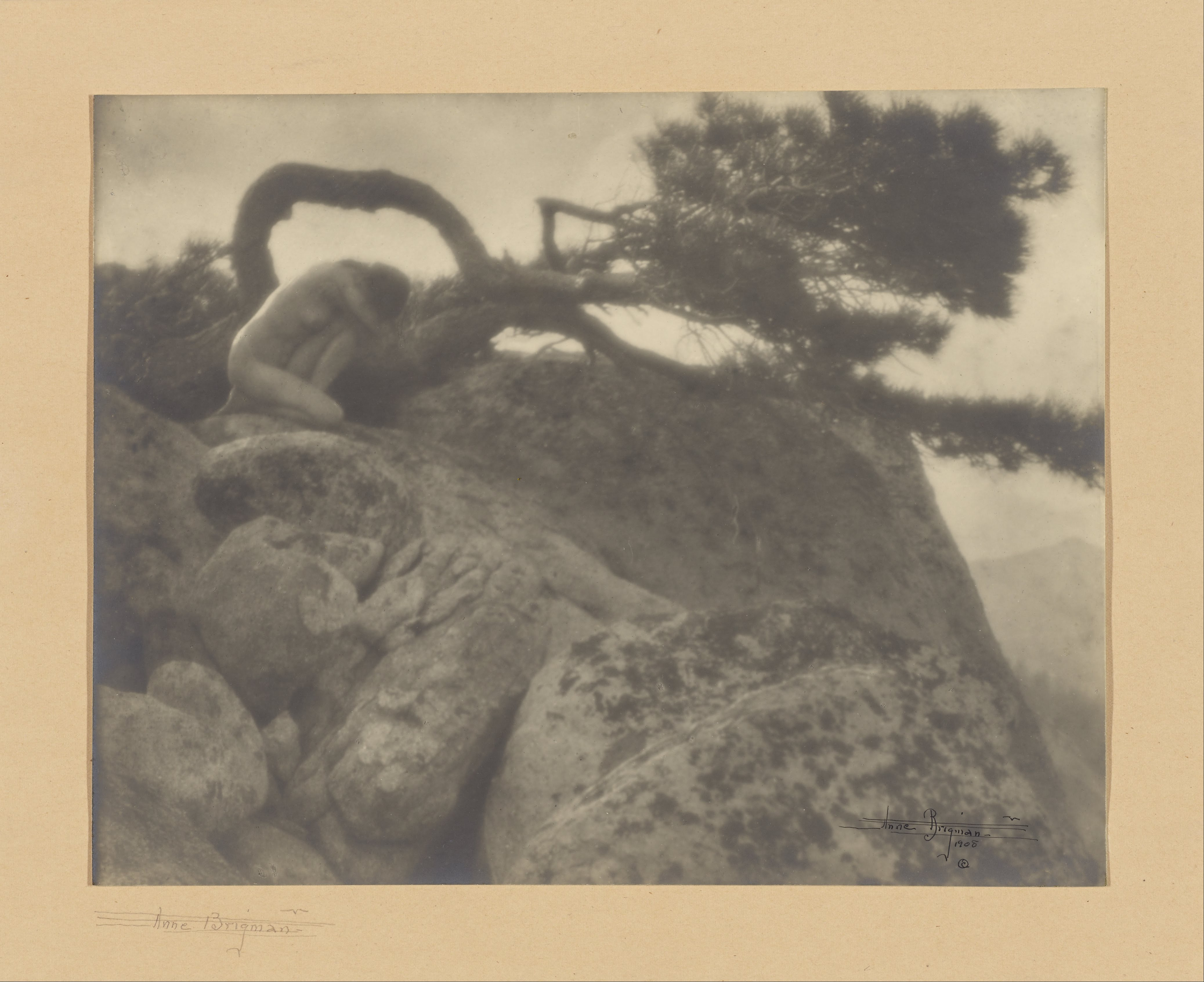 Les grands photographes - Page 3 Anne_W._Brigman_%28American_-_%28The_Lone_Pine%29_-_Google_Art_Project