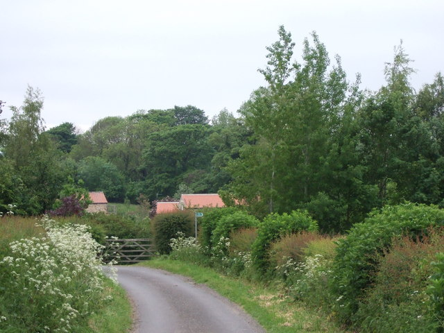 Approach to Alwent Mill - geograph.org.uk - 459022