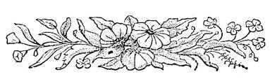 Fileblack and white flower border 1g wikimedia commons fileblack and white flower border 1g mightylinksfo