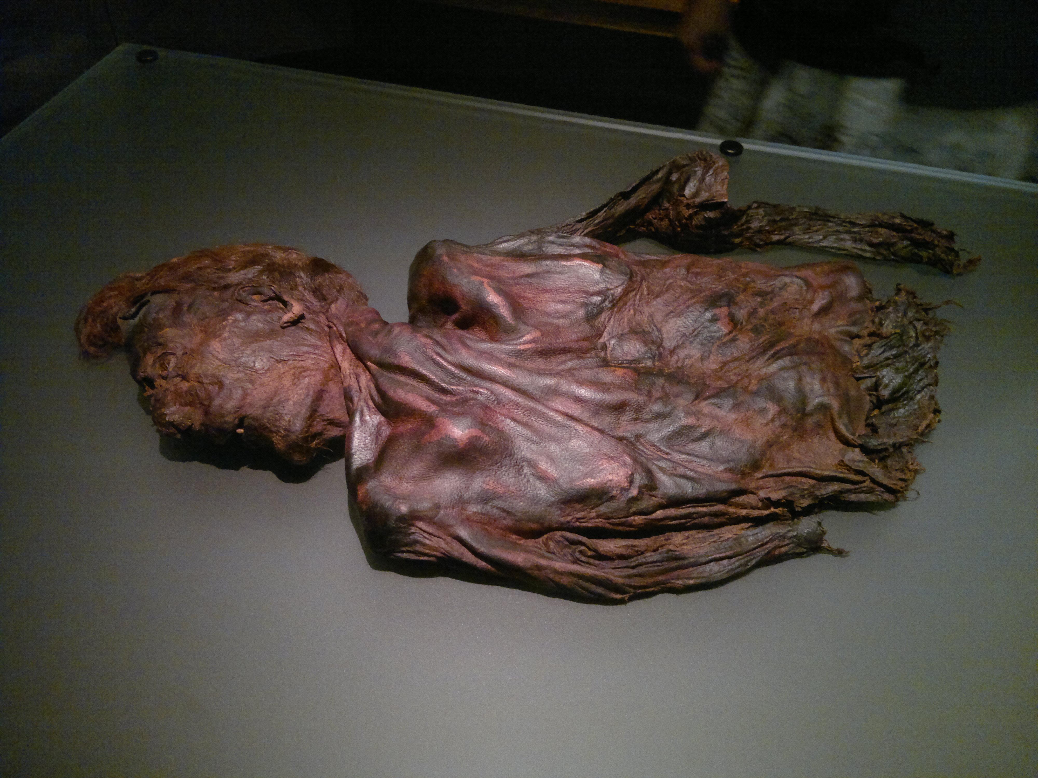 Clonycavan Man Bog Body