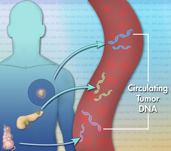 File:Circulating-tumor-dna-article. v300237192.jpg