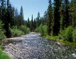 Crescent Creek, Klamath County, OR.jpg