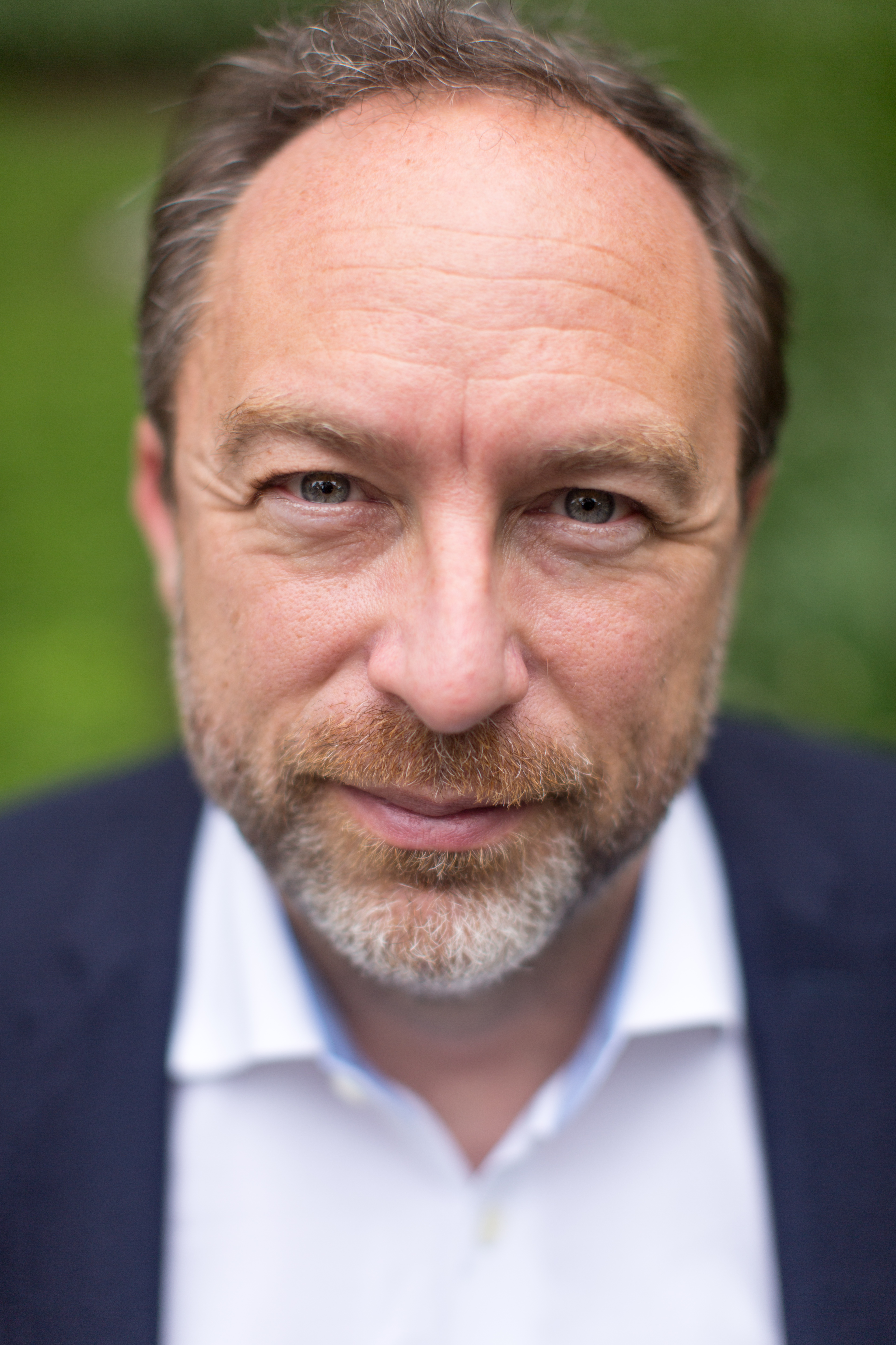 jimmy wales Jimmy wales, the internet entrepreneur who is famous for cofounding the not-for-profit wikipedia and the for-profit wikia, has been quite outspoken over the years on the topic of blockchain and cryptocurrencies.