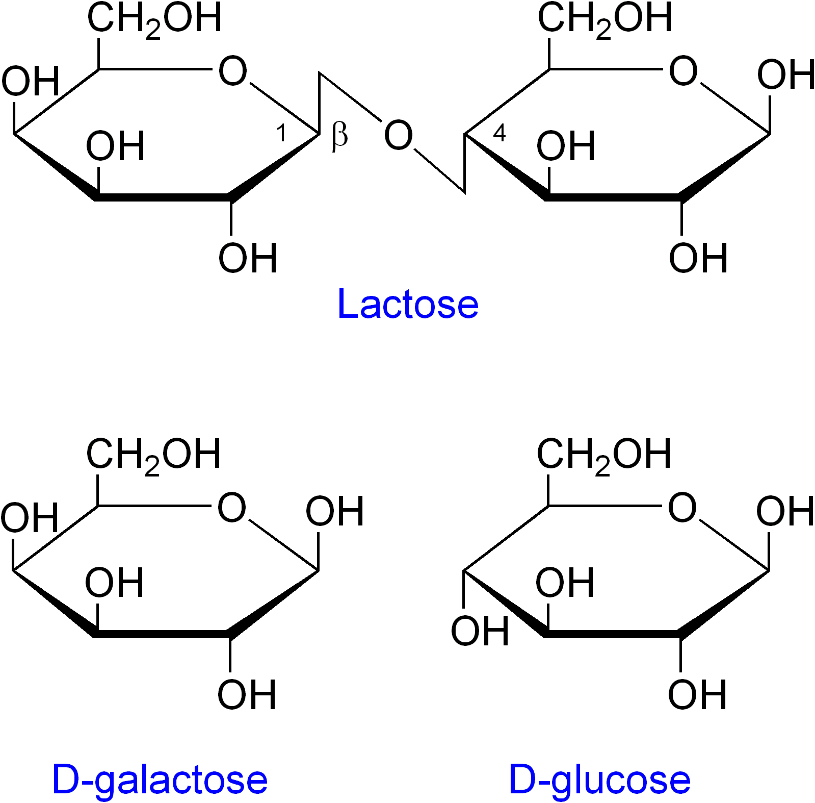 File:Lactose etc.png - Wikipedia