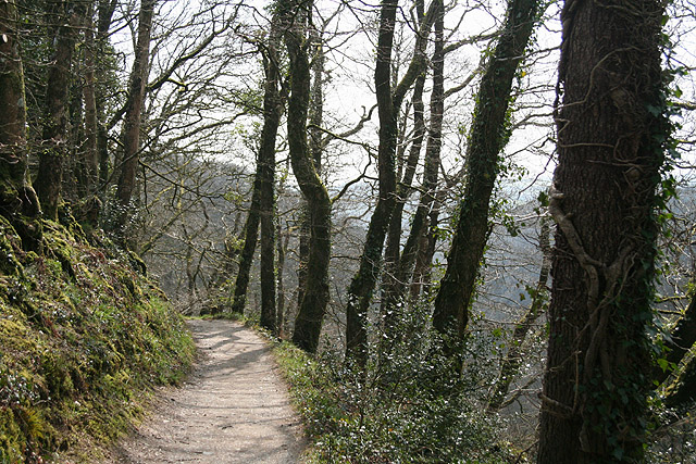 Lydford, overlooking Lydford Gorge - geograph.org.uk - 774644