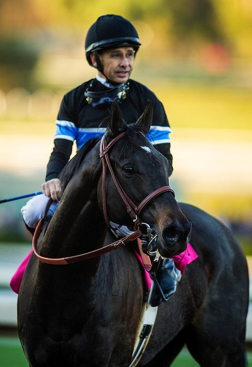 Shared Belief - Wikipedia-4747