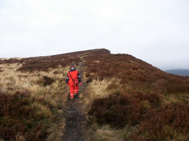 On the ridge, lantern Pike - geograph.org.uk - 1079544