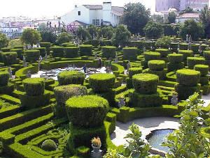Mirrhoses garden