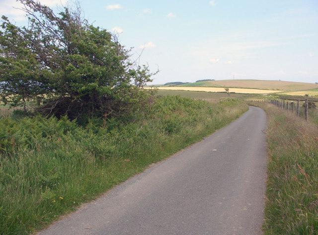 Ridgeway walk towards Mynydd Baedan - geograph.org.uk - 852745