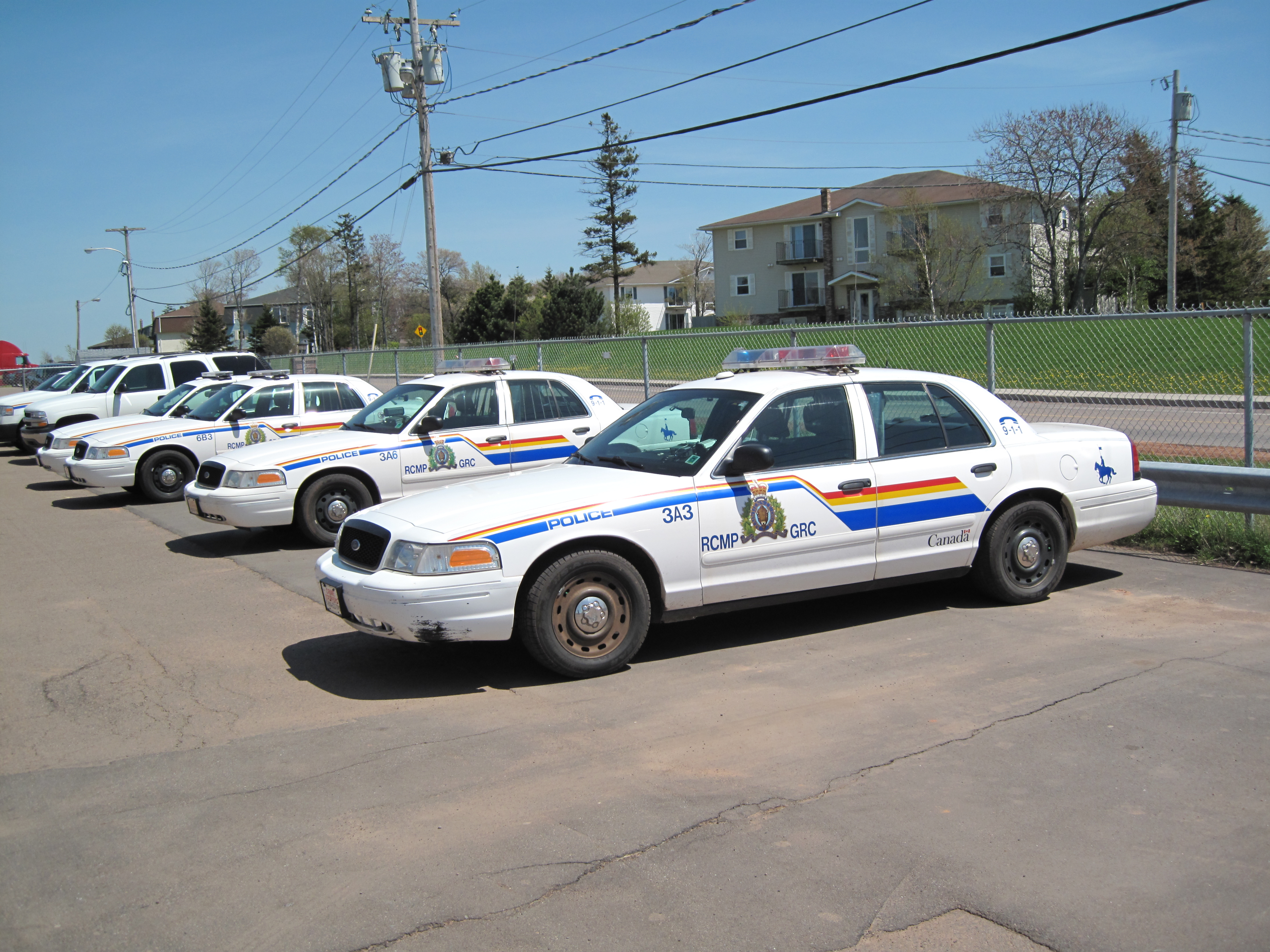 Mustang Police Car For Sale